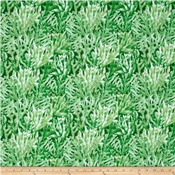 Aquatic Coral Green