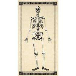 Timeless Treasures Mr. Bones 24 In. Skeleton Panel Cream