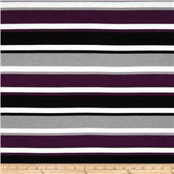 Dakota Jersey Knit Stripes Grey/Purple