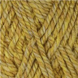 Lion Brand Vanna's Colors Yarn (206) Topaz