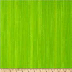 Broadway Texture Broadway Lime