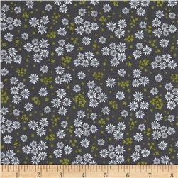 Wildflowers Daisy Grey