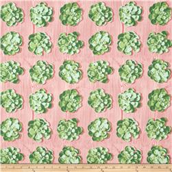 Joel Dewberry Cali Mod Home Decor Sateen Twill Succulents Cacutus