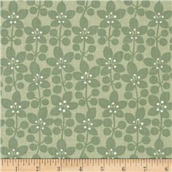 Cosmopolitan Flowers Medium Green