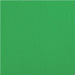 Wintry Fleece Green Fabric