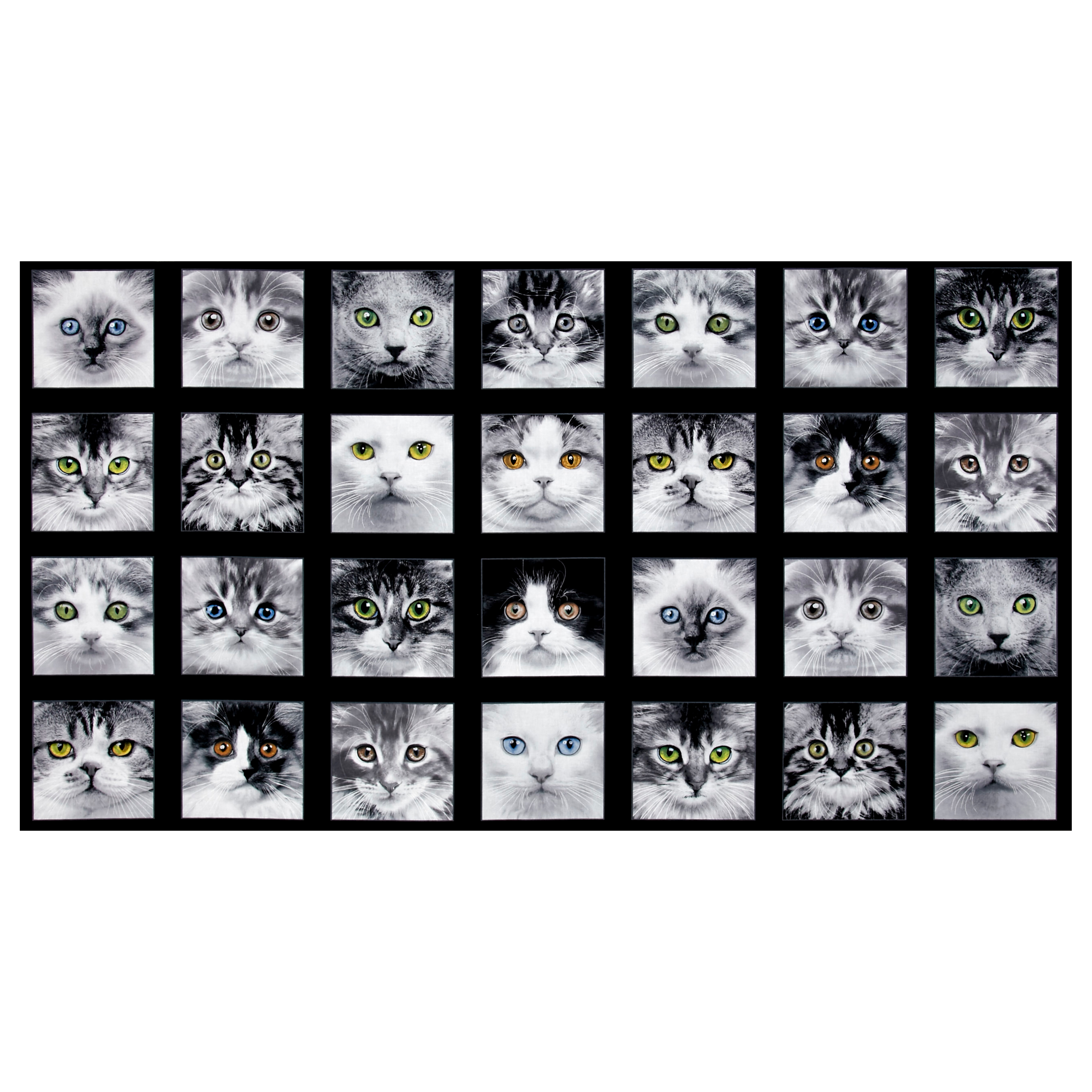 Adorable Pets Cats 23'' Panel Black Fabric 0467100