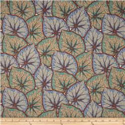 Kaffe Fassett Collective Begonia Leaves Grey Fabric
