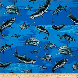 Allover Sharks Blue