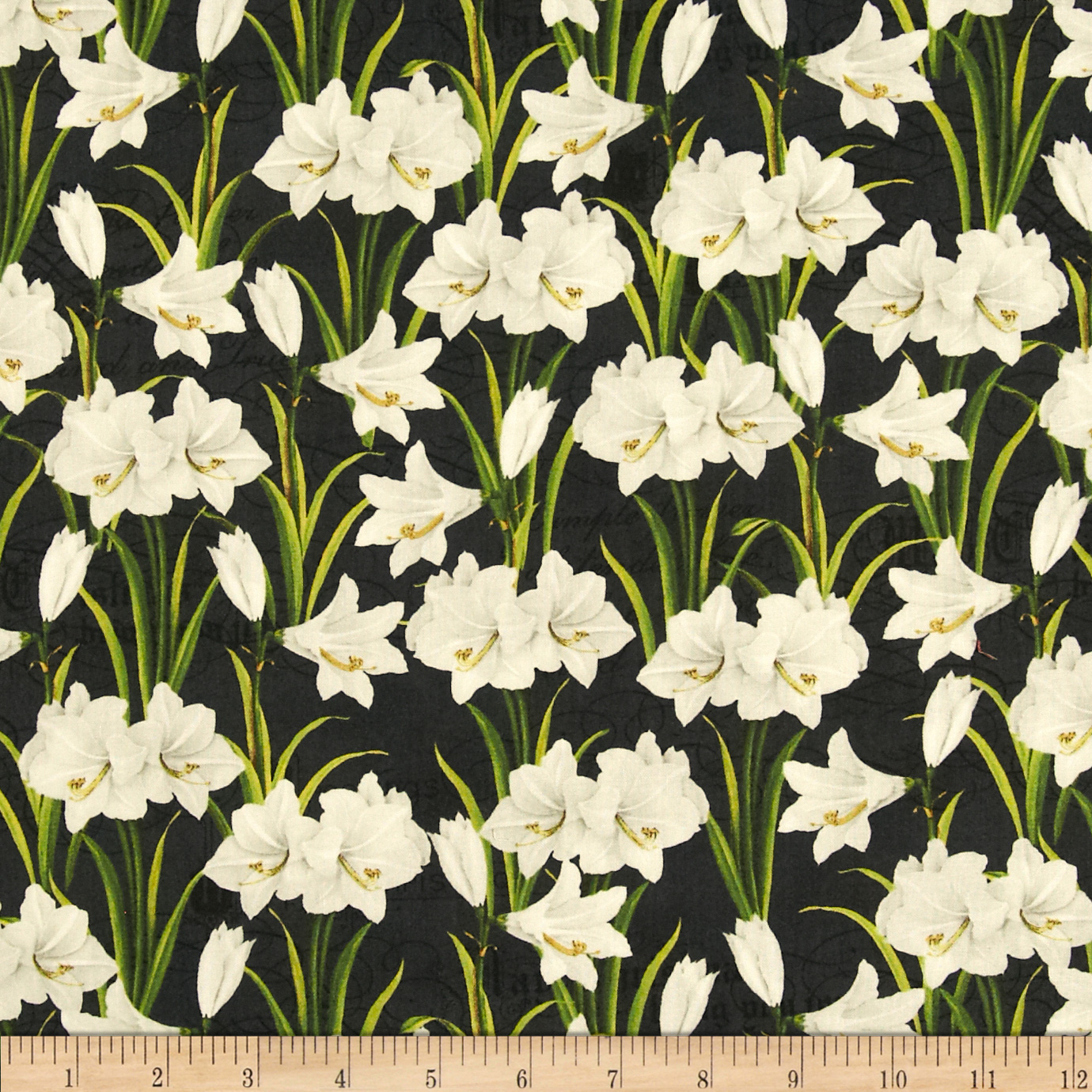 Holiday Magic Amaryllis Black Fabric