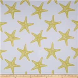 RCA Blackout Starfish Gold