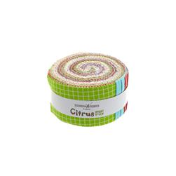 "Citrus 2 1/2"" Strips Multi"