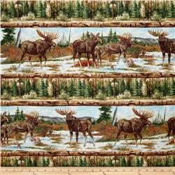 Into The North Moose Repeating Stripe Brown/Multi