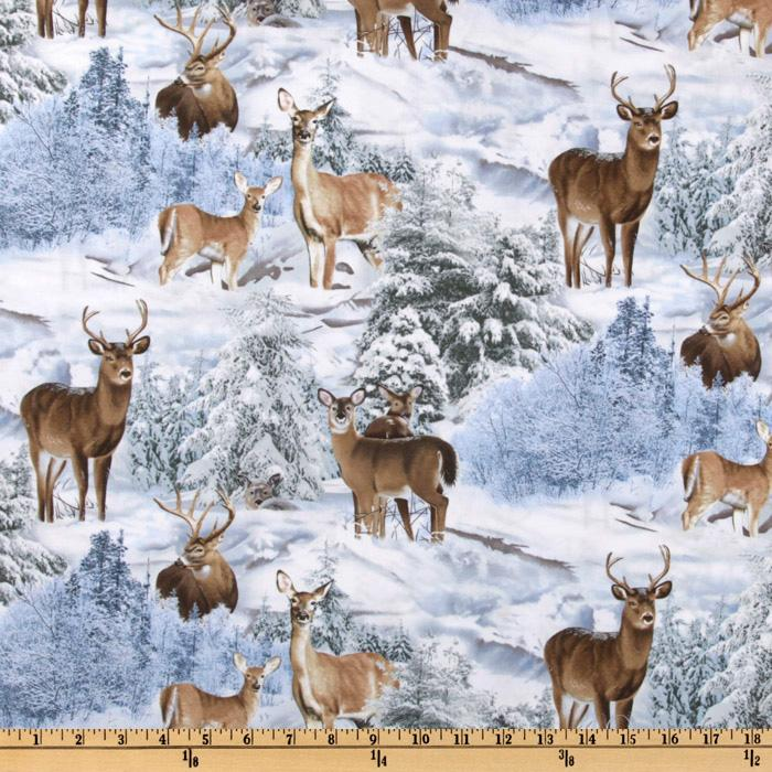 North American Wildlife Winter Deer White