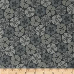 Splash Sand Dollar Gray
