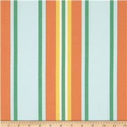Swavelle/Mill Creek Indoor/Outdoor Trudy Stripe Celestial