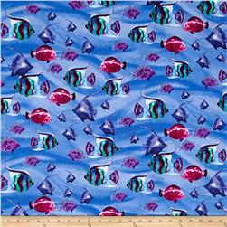 Aquatic Fish Blue