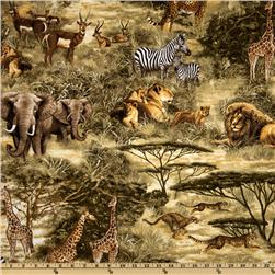 Timeless Treasures African Safari Wildlife Scenic Natural