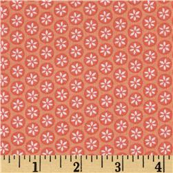 Wildflowers Daisy Dot Pink