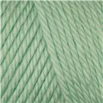Caron Simply Soft Yarn 6oz (9739) Soft Green