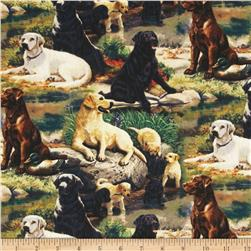 Wild Wings Best in Breed Scenic Brown Fabric
