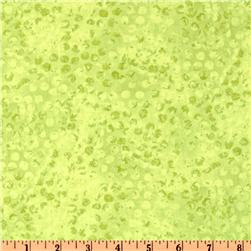 Complements Dots & Spots Light Green