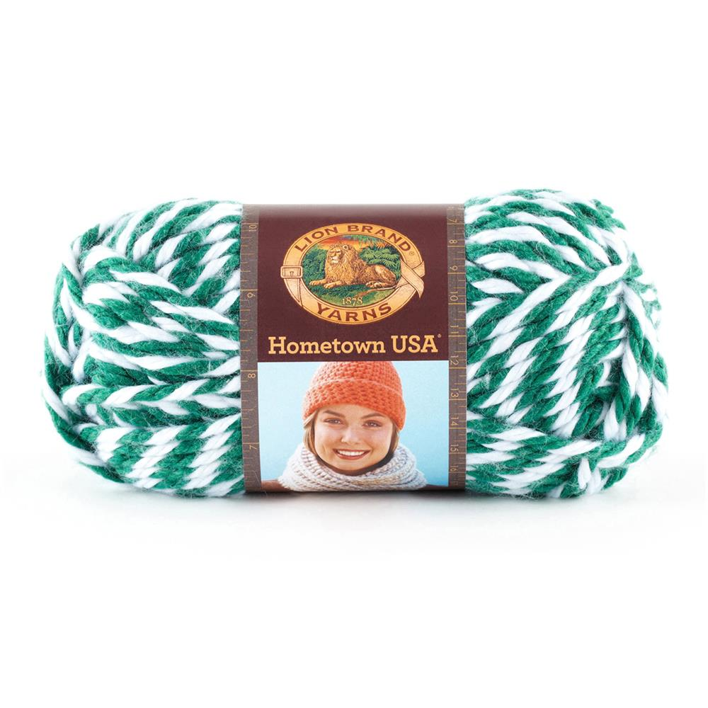 Lion Brand Hometown USA Yarn 605 Spartans