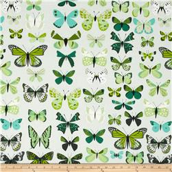 Natural History Butterflies Green