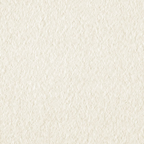 Wintry Fleece Ivory Fabric