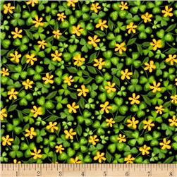 Lucky Shamrocks Shamrocks & Clovers Black