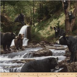 Timeless Treasures Into the Wild Bears Black