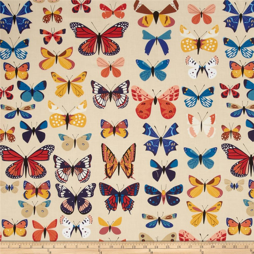 Natural History Butterflies Cream
