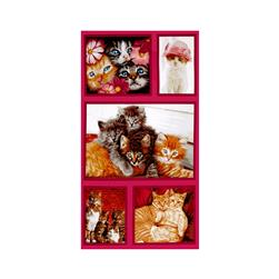 Kaufman Cat Crazy Blocks Multi