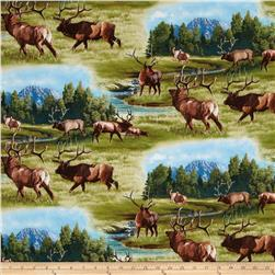 North American Wildlife Elk Green