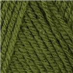Waverly Yarn for Bernat Simplicity (55290) Turtle Green
