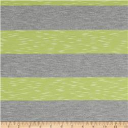 Yarn-Dyed Jersey Stripe Knit Grey/Lime