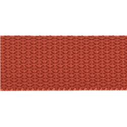 1'' Polyester Webbing Paprika Fabric