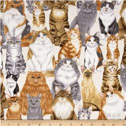 Kanvas Kitty Galore Cats Meow Cream Fabric