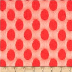 Jacquard Dot Lace Tomato Orange