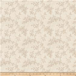 Jaclyn Smith 03724 Stone