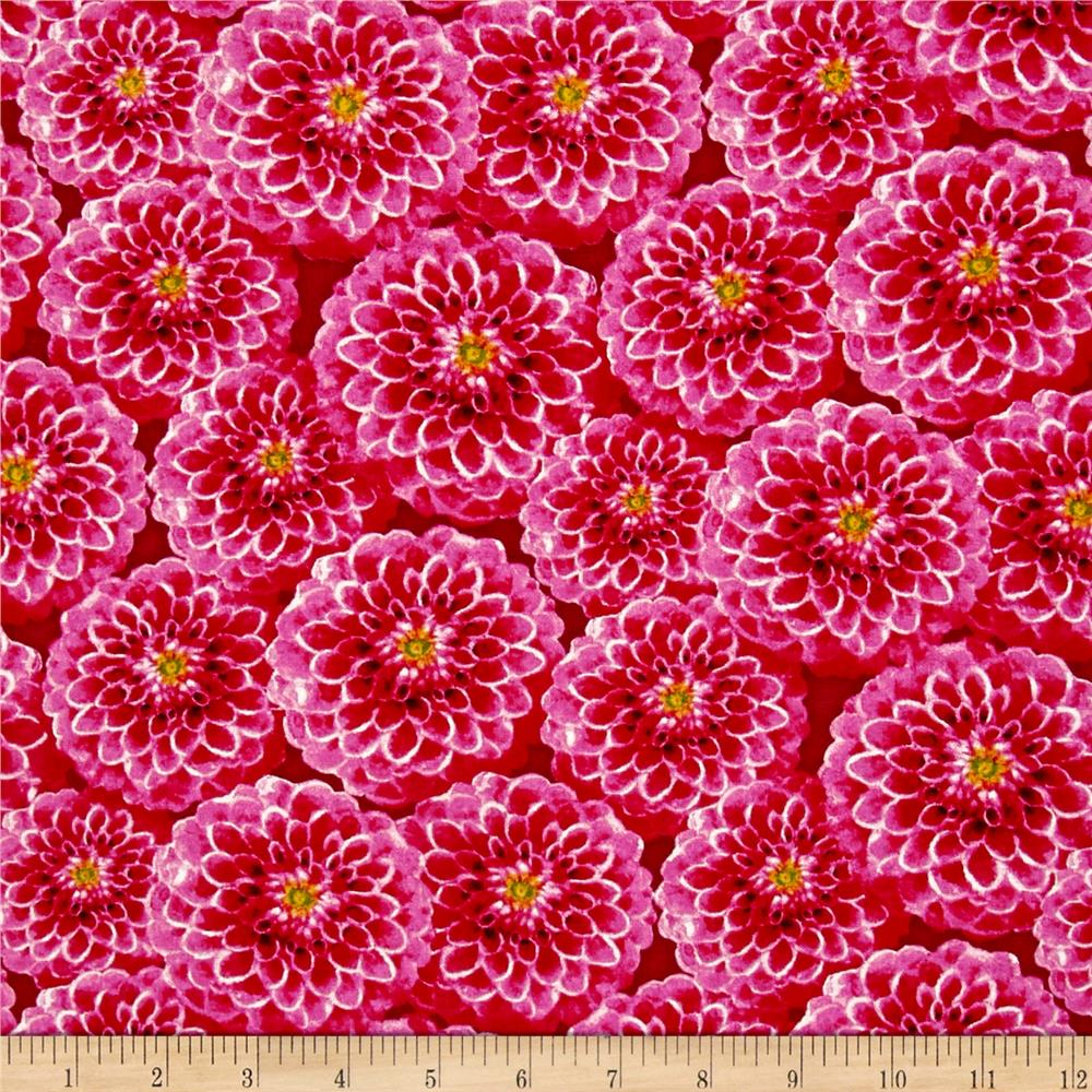 prelude packed dahlias pink   discount designer fabric