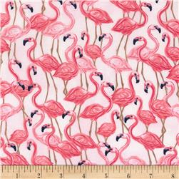 Timeless Treasures Oasis Flamingos Pink