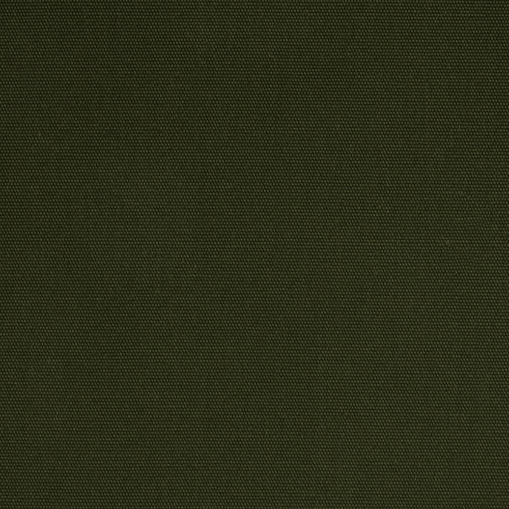 60'' Cotton Duck Green Fabric