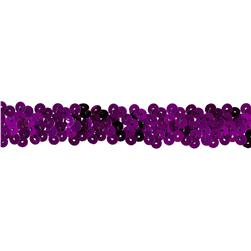 Team Spirit #30 Sequin Trim Purple