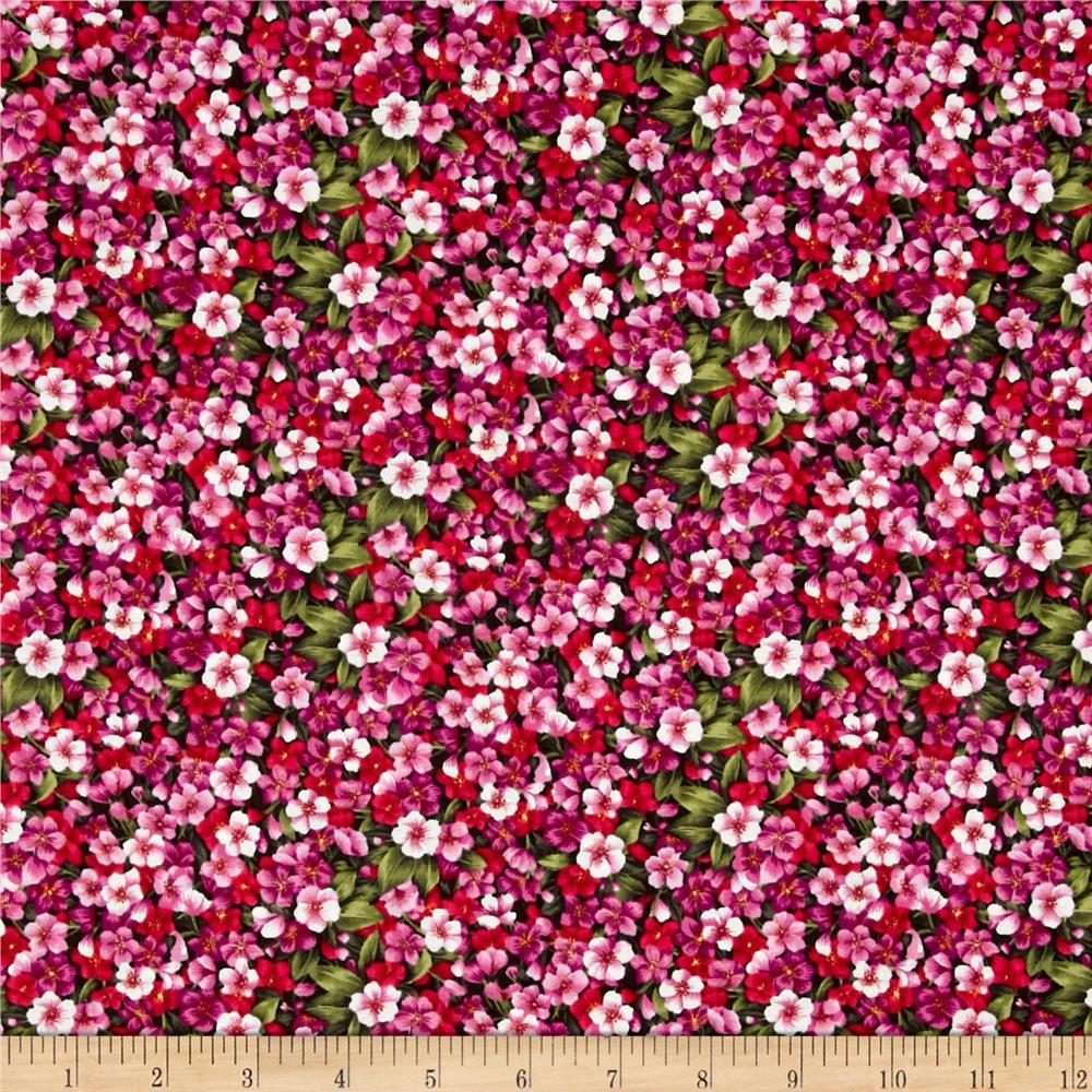 Asian Garden Packed Pansy's Pink Multi