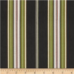 Avignon Awning Stripe Black