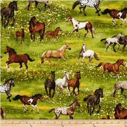 Band of Horses Horses Yellow
