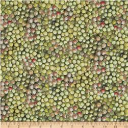 Mia Sonoma County Digital Print Green Grapes Green