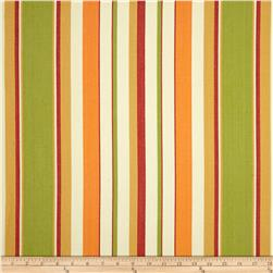 Covington South Beach Stripe Tropique