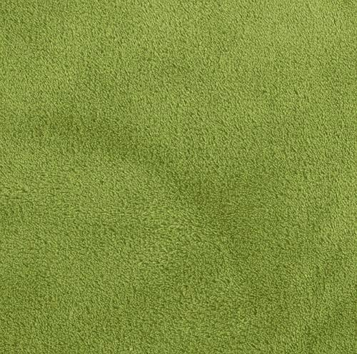 Double-Sided Minky Fleece Olive