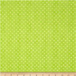 Essentials Brights Dotsy Lime